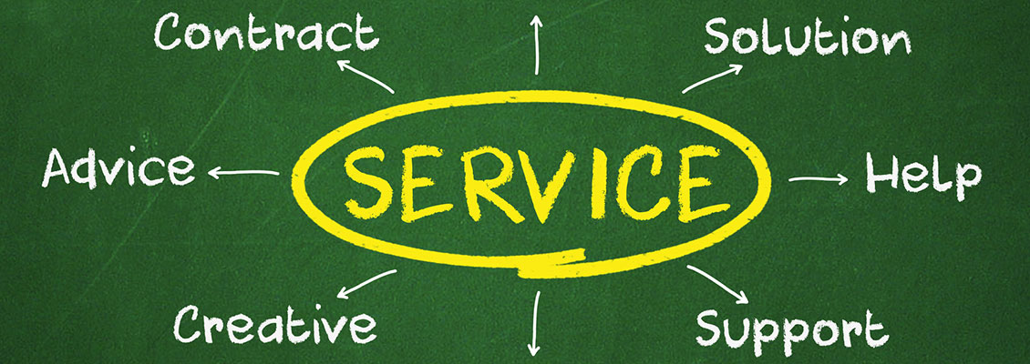 service organization strategies, inc